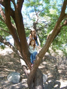 NW girls in tree