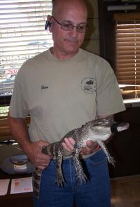 1 alligatorbaby