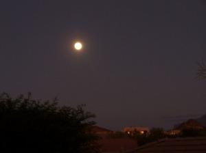 harvest moon2