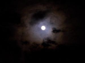 harvest moon4