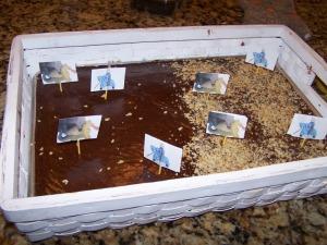 MC cake