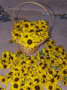 sunflowersbasket